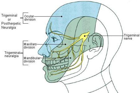 nervo trigemeo 3