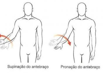 pronação e supinação